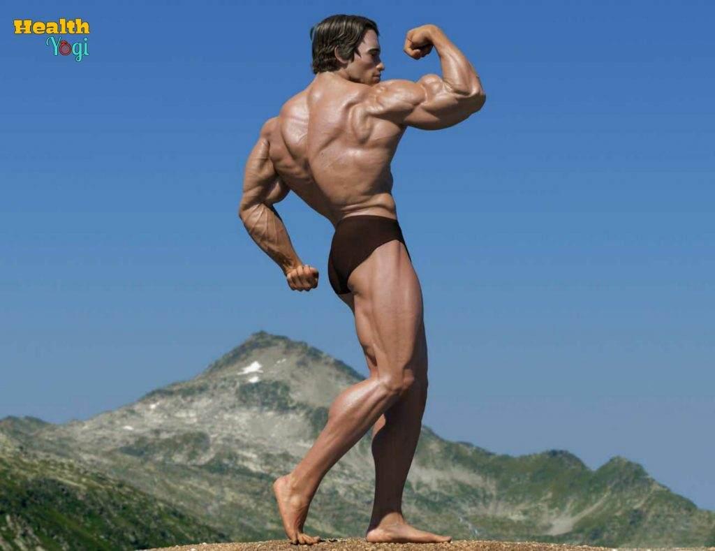 Arnold Schwarzenegger body HD Photo