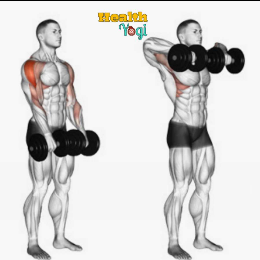 Upright Row For Back Workout