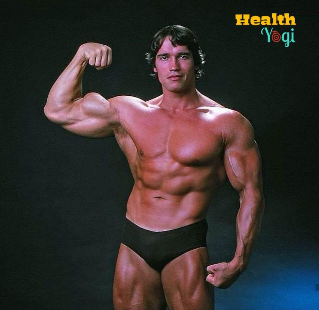 Arnold Schwarzenegger Full Body