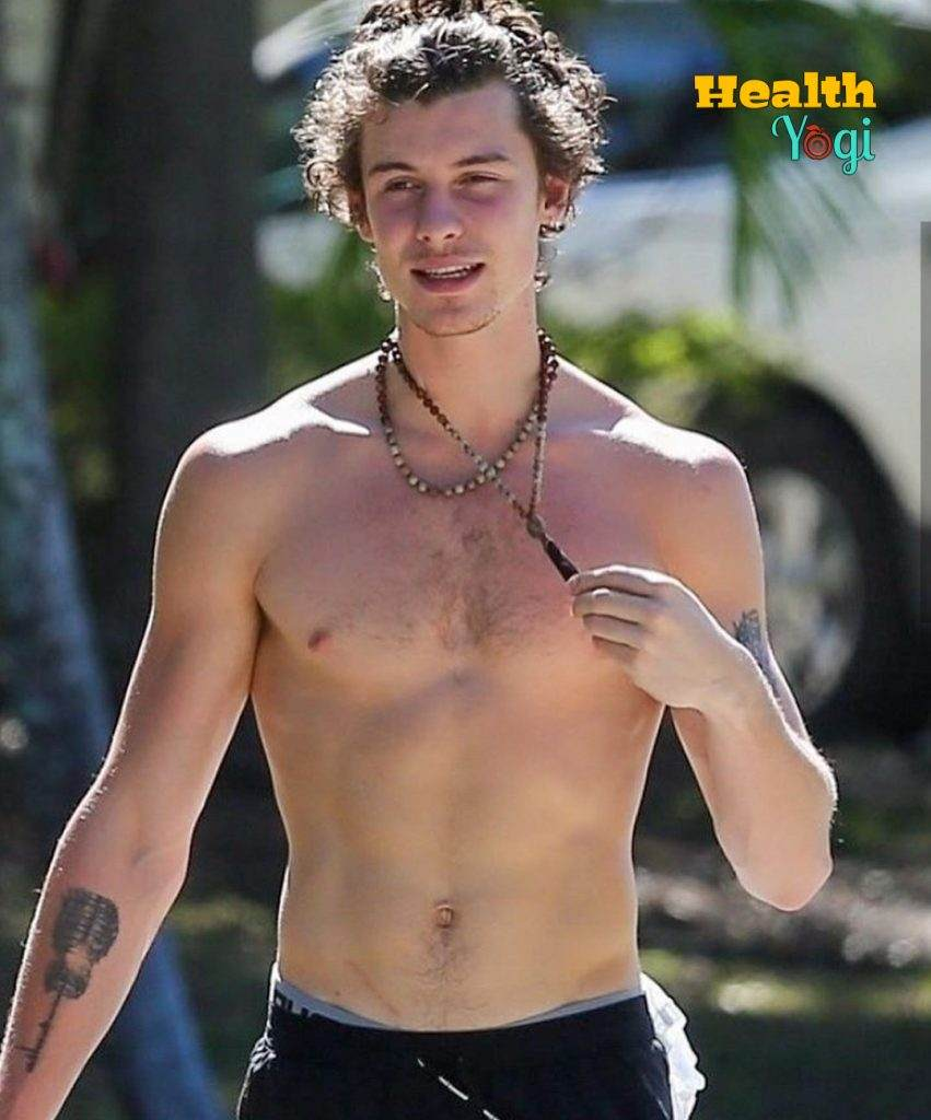 Shawn Mendes Exercise , fitness tarining